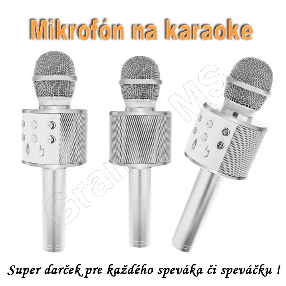 Bezdrôtový mikrofón s bluetooth SPEAKER4 - strieborný