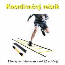 Koordinačný rebrík 6M na cvičenie
